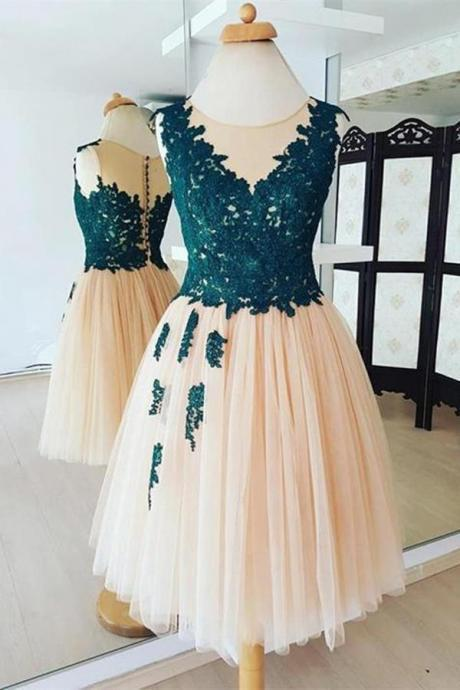 Chic Round Neck Organza With Lace Appliques Homecoming Dress